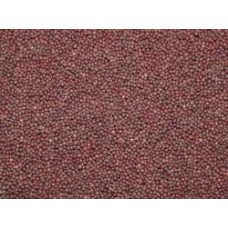 RAAI  MUSTARD SEEDS BIG 50GM 20PK RS 200